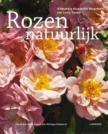 Uitbundig bloeiende rozen : de mooiste moschata van Lens Roses