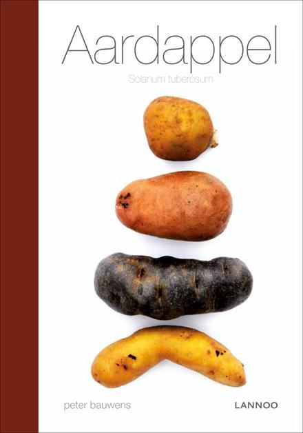Aardappel : solanum tuberosum