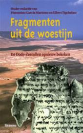Fragmenten uit de woestijn : de Dode-Zeerollen opnieuw bekeken