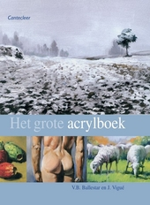 Het grote acrylboek