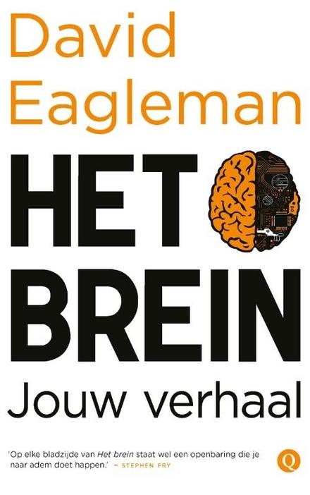 Het brein : jouw verhaal