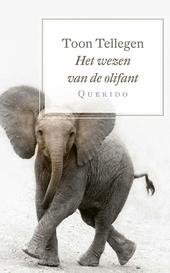 Het wezen van de olifant