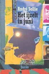 Het ijzelt in juni : gedichten en collages