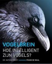 Vogelbrein : hoe intelligent zijn vogels?