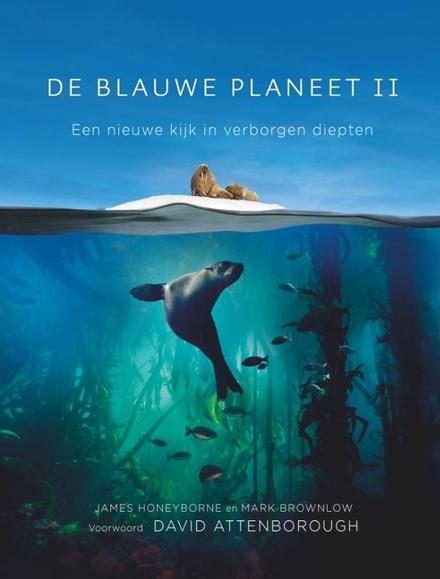 De blauwe planeet. II, Een nieuwe kijk in verborgen diepten