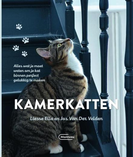 Kamerkatten : alles wat je moet weten om je kat binnen perfect gelukkig te maken