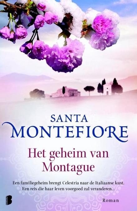 Het geheim van Montague