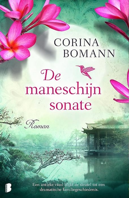De maneschijnsonate : roman