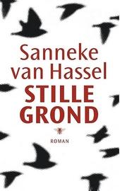 Stille grond : roman