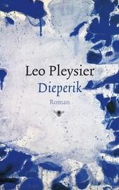 Dieperik : roman