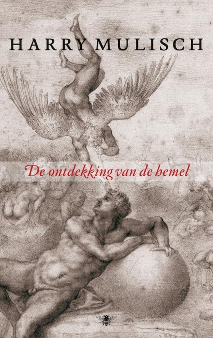 De ontdekking van de hemel : roman