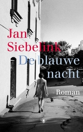 De blauwe nacht : roman