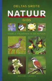 Grote natuurgids : vogels, insecten, bloemen in de natuur