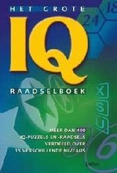 Het grote IQ raadselboek