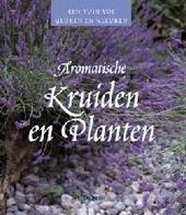 Aromatische kruiden en planten