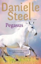 Pegasus : een immigrantenfamilie overleeft dankzij een raspaard