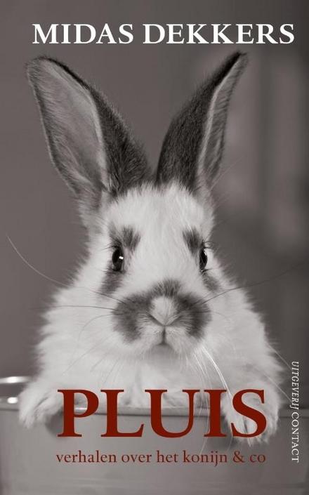 Pluis : verhalen over het konijn & co