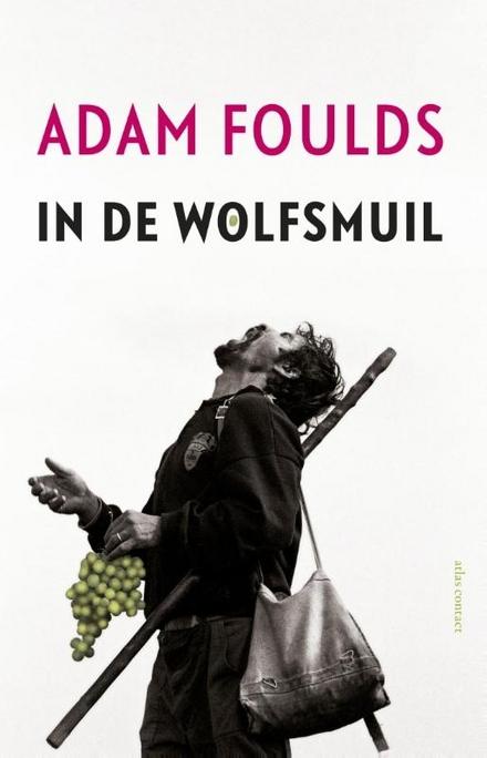 In de wolfsmuil : roman