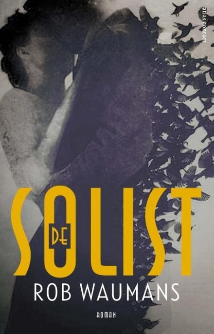 De solist : roman - muziek de manier om haar terug te vinden