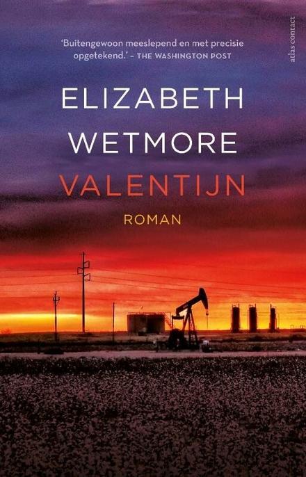 Valentijn : roman