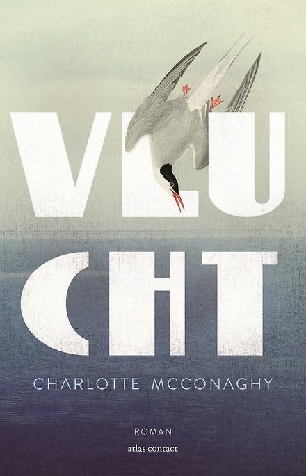 Vlucht : roman - Indrukwekkend!