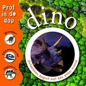 Dino : ontdekken begint met één enkel woord