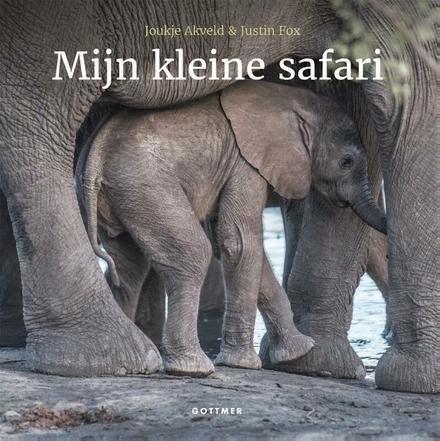 Mijn kleine safari