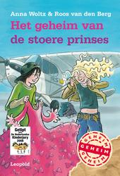 Het geheim van de stoere prinses