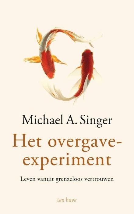 Het overgave-experiment : leven vanuit grenzeloos vertrouwen