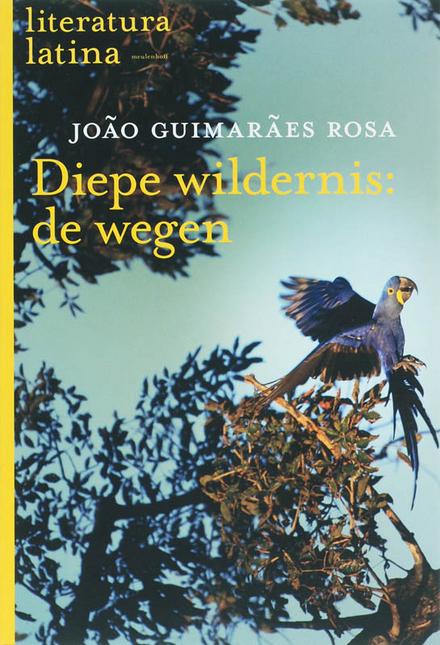 Diepe wildernis : de wegen : roman
