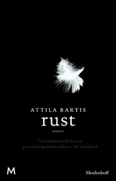 Rust : roman