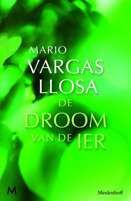 De droom van de Ier : roman