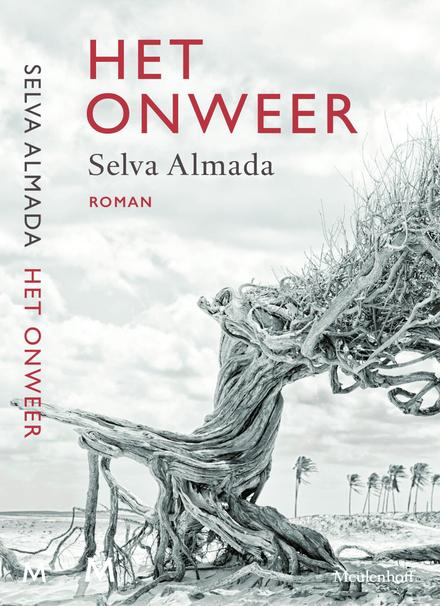 Het onweer : roman - Een toevallige ontmoeting
