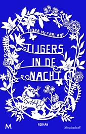 Tijgers in de nacht : roman