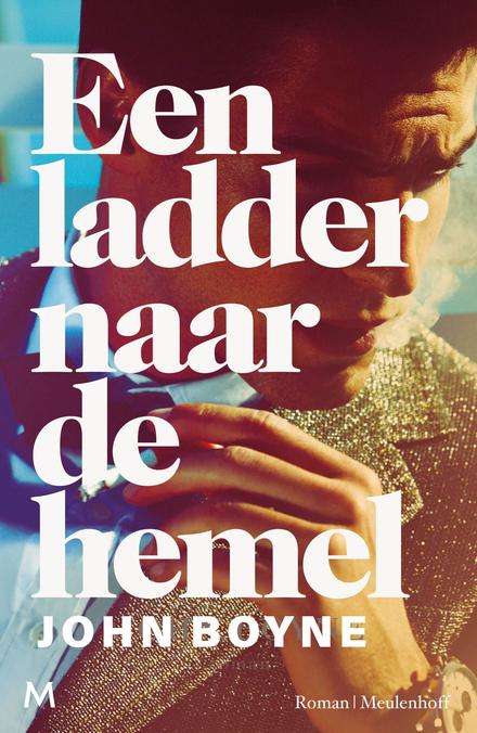 Een ladder naar de hemel : roman