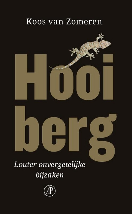 Hooiberg : louter onvergetelijke bijzaken