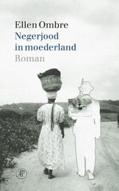 Negerjood in moederland : roman