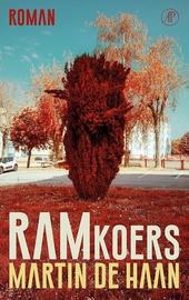 Ramkoers : roman