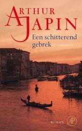 Een schitterend gebrek : roman