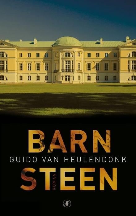 Barnsteen : roman