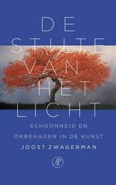 De stilte van het licht : schoonheid en onbehagen in de kunst