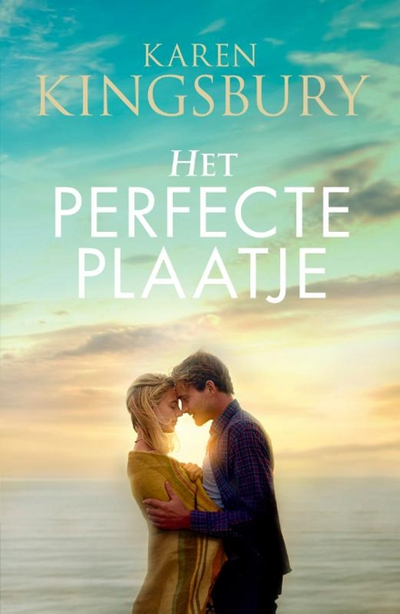 Het perfecte plaatje : roman