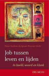 Job tussen leven en lijden : in beeld, woord en klank