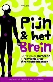 Pijn & het brein : de rol van de hersenen bij 'onverklaarde' chronische klachten