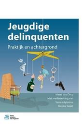 Jeugdige delinquenten : praktijk en achtergrond