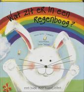 Wat zit er in een regenboog? : een boek met toverlinten