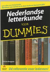 Nederlandse letterkunde voor dummies