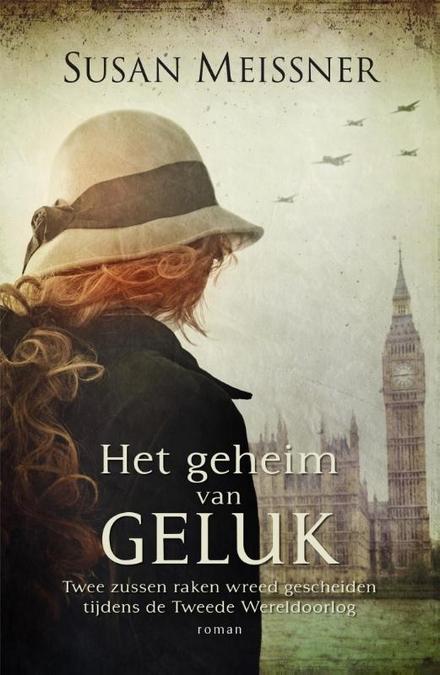 Het geheim van geluk : roman