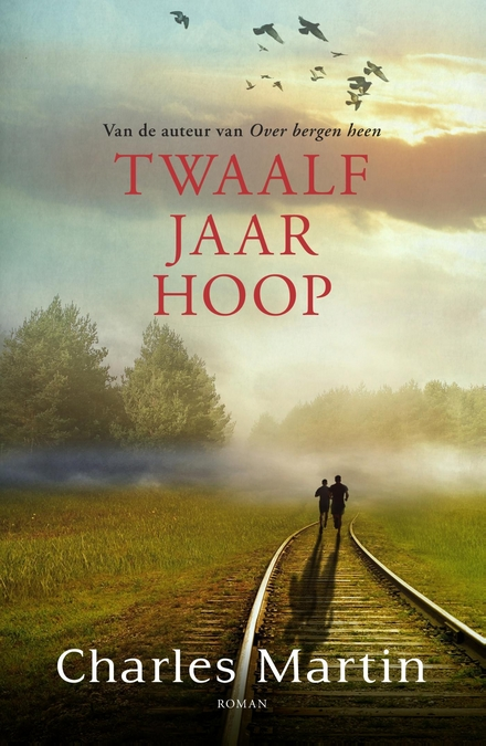 Twaalf jaar hoop : roman