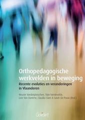 Orthopedagogische werkvelden in beweging : recente evoluties en veranderingen in Vlaanderen